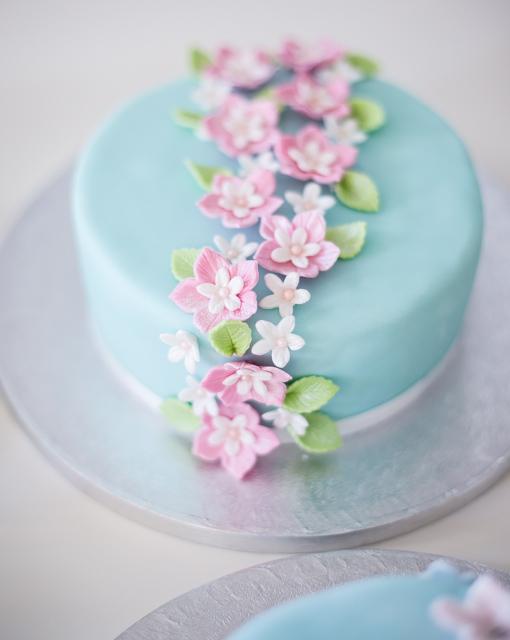 Tortenkurs Basics - Motivtorten Grundkurs bei Minh Cakes - Beispiel
