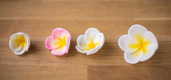 Minh Cakes Frangipani Plumeria Tutorial