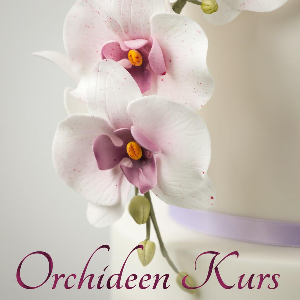 Orchideen Kurs bei Minh Cakes