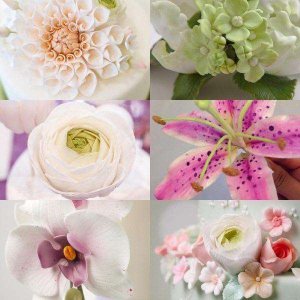 Minh Cakes Blumen-Abo Woocommerce Product Image